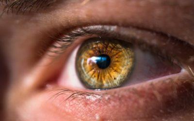 5 bonnes raisons d'avoir une identité visuelle