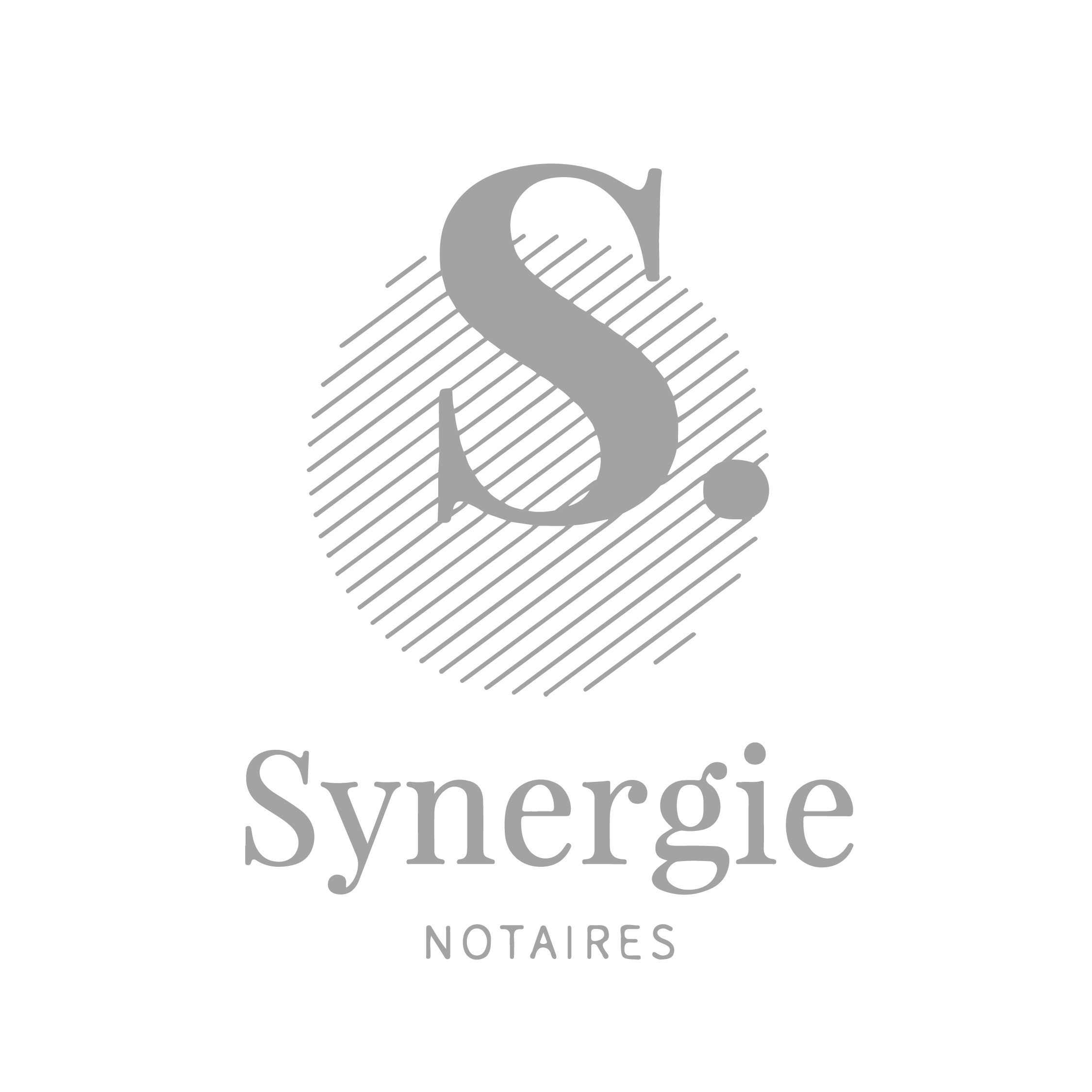 Logo Synergie - Break-Out Company